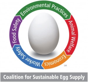 Coalition_for_Sustainable_Egg_Supply_-_Small_JPG cw